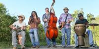 Chubby Knuckle Choir